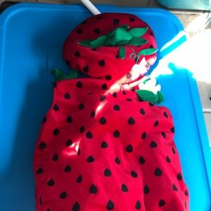 Other - Strawberry costume
